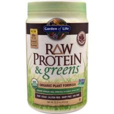 Garden of Life RAW Protein & Greens™ Organic Powder Real Raw Chocolate Cacao -- 22 oz