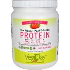 Natural Factors VegiDay™ Raw Organic Plant-Based Protein Berrylicious -- 16.37 oz
