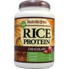 NutriBiotic Raw Rice Protein Powder Chocolate -- 1.69 lbs